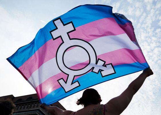 fabiana-omotransfobia-transgender