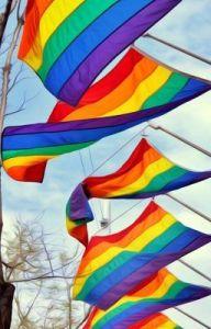 jan-markell-william-koenig-omofobia