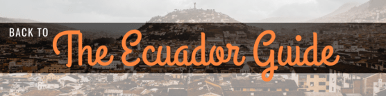 things to do in Guayaquil Ecuador | Las Peñas, Cerro Santa Ana, Malecon 2000, Iguana Park, markets ecuador guide