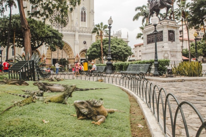 Ecuador backpacking guayaquil what not to miss 2 weeks in Ecuador itinerary