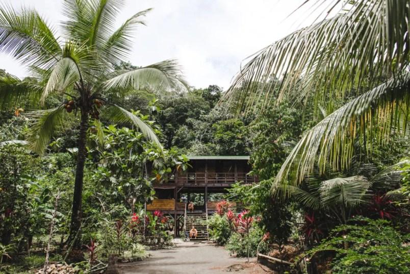 pelican house hostel el valle colombia