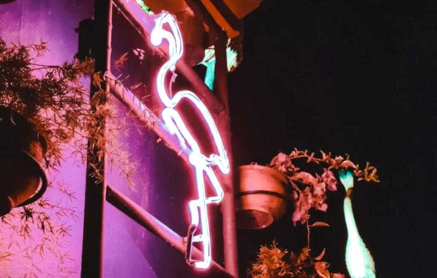 la jugada club house rooftop flamingo best bars in Cartagena