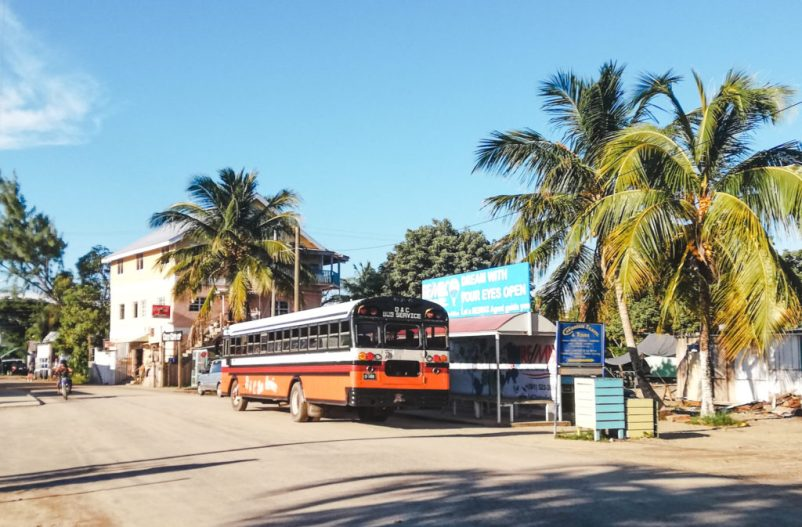 Placencia bus: How to survive chicken buses in Belize: safety and staying comfortable bus travel
