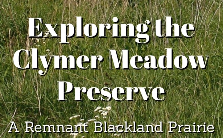 Exploring the Clymer Meadow Preserve 1