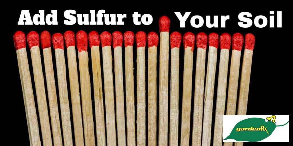 sulfur soil