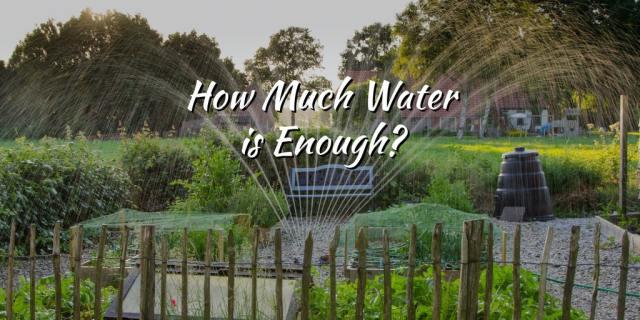 water sprinkler