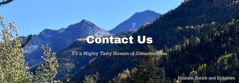 contact us splash