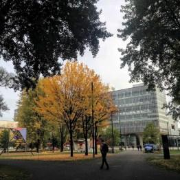 campus Eindhoven