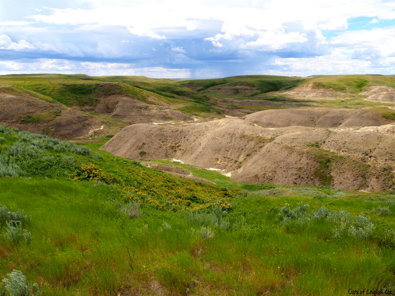 Grasslands National Park SK
