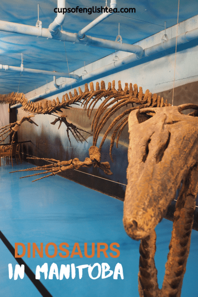 Canadian Fossil Discovery Centre Morden