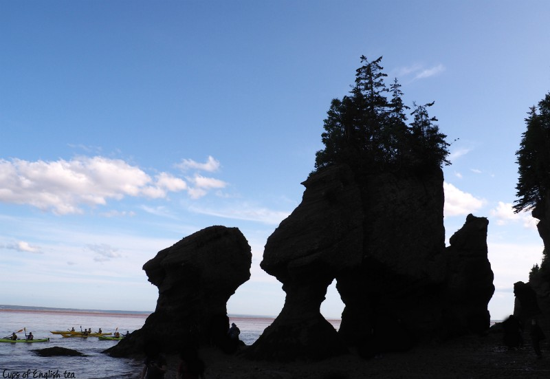 Hopewell Rocks Nouveau Brunswick