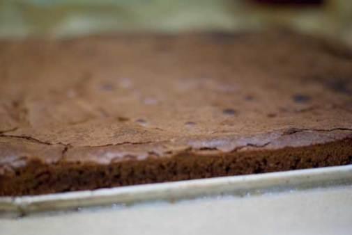 brownie_01