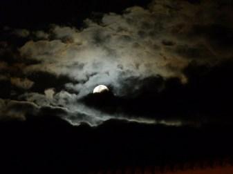 Luna santa faz7