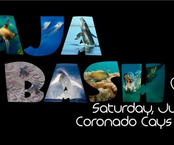 Baja, Wildcoast baja Bash, san diego, charity,
