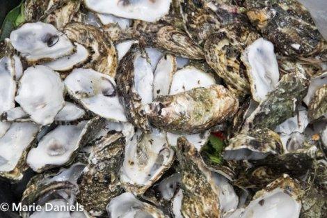 kumiai oysters, baja chefs, baja chef network, bitter brothers brewing, san diego, charity event, feeding san diego