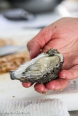 kumiai oysters, baja chefs, baja chef network, bitter brothers brewing, san diego, charity event, feeding san diego