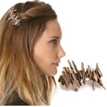 Modern Chic French Barrette Clips $110 FREE WORLDWIDE SHIPPING