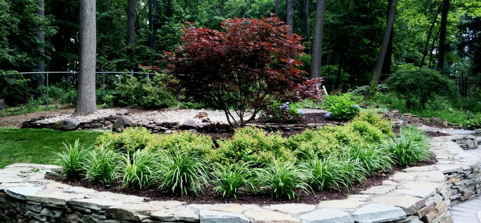 curb appeal landscaping charlotte nc ideas landscape solutions design llc