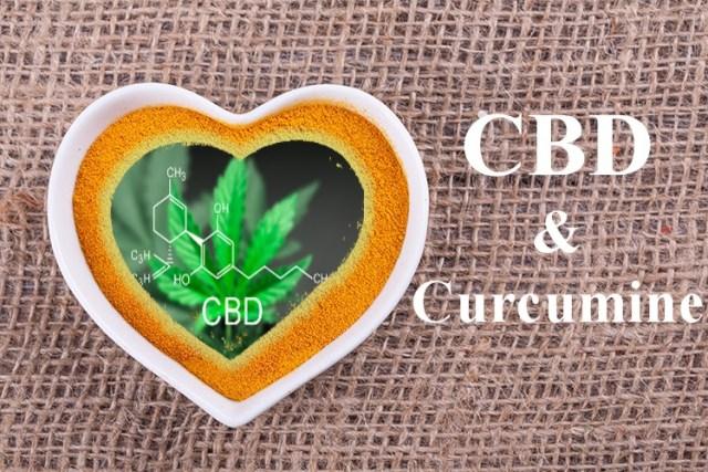 curcumine - cbd - association