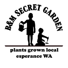 Secret Garden stamp design