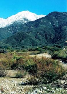Deer Creek landscape-3-VERT-258x358