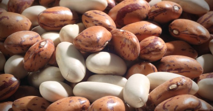 4-beans-and-legumes