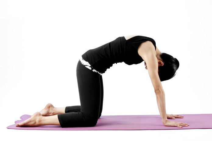 Pack These Yoga Poses for Your Journey -  Marjaryasana  (Cat pose)