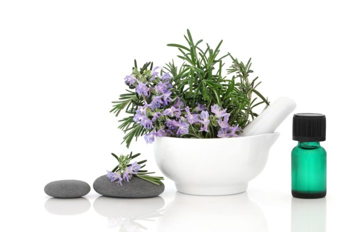 Rosemary and Its Benefits for Good Health