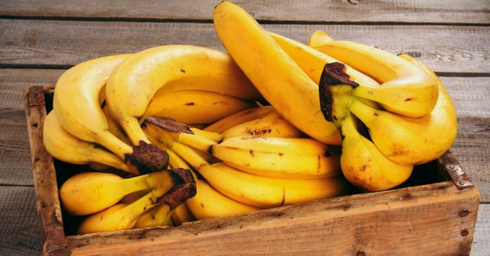 20 Reasons To Eat Bananas Every Day