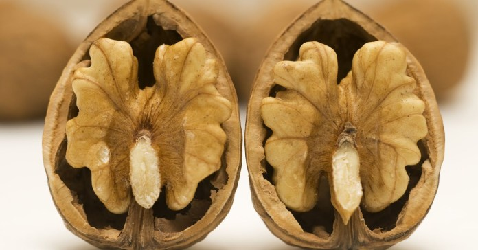 How Walnuts Can Boost Fertility and 17 Other Healthy Reasons