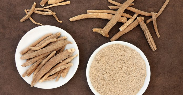 7 Things You Didn't Know About…Ashwagandha!