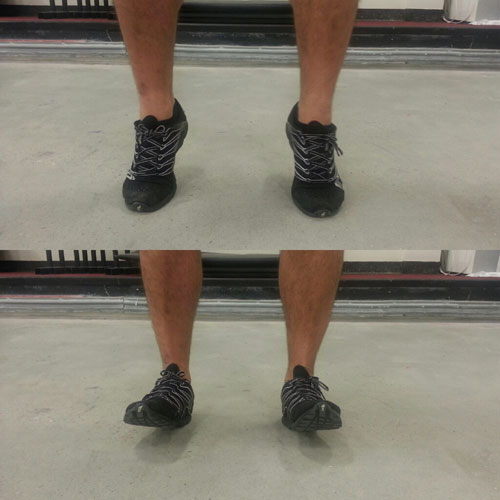 Ankle Flexicon and Extension