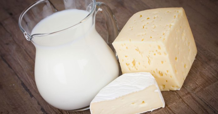 What is an ayurvedic remedy for lactose intolerance?
