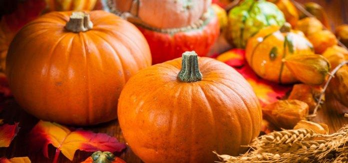 Ayurvedic Gluten Free Recipe Pumpkin Quinoa Flatbread