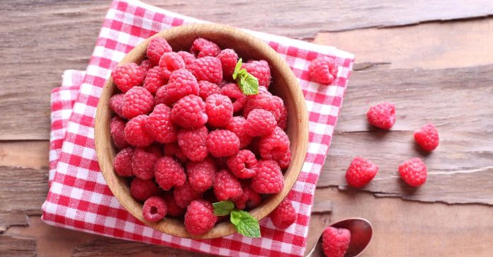 Raspberry Super-Fruit That Fights Fat And Cancer