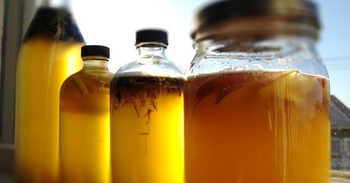 How To Make Kombucha Tea And What To Use