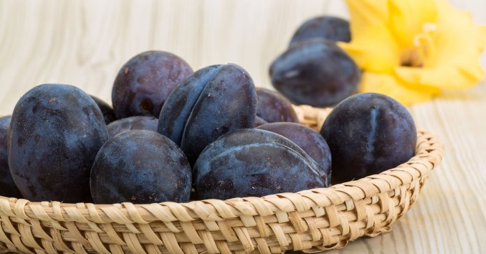 Eat Prunes And Plums For Healthy Bones