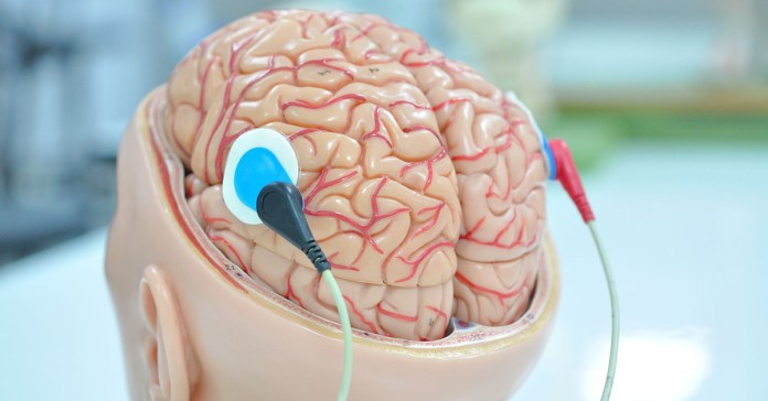 Connecting Your Brain And Gluteal Muscles