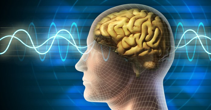 What Are The Different Types Of Brain Waves?