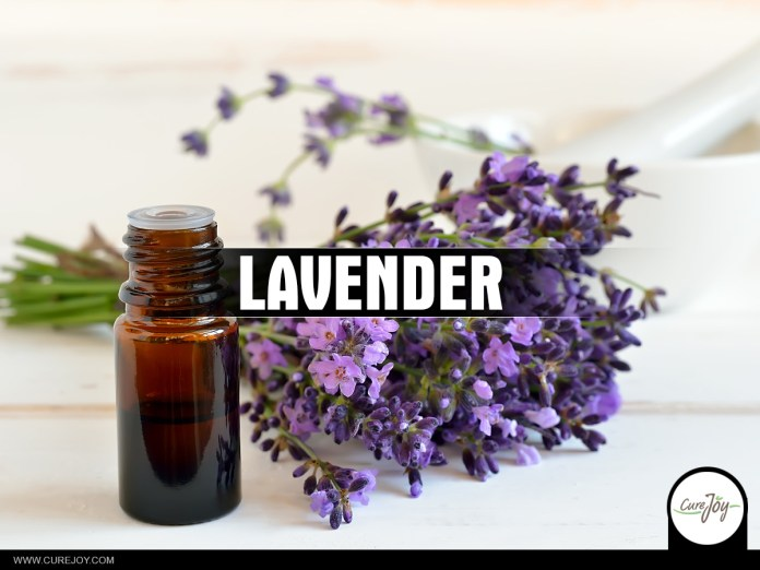 22-Lavender