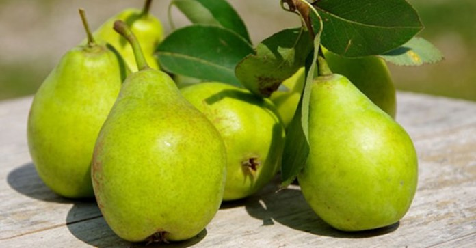 """Why """"A Pear a Day"""" is the New Health Mantra"""