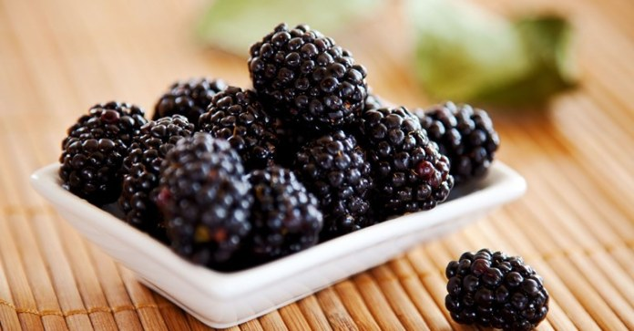 Yummy Blackberry Recipes For A Healthy Lifestyle