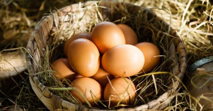 Natural-Eggshell-Membrane---Effective-Arthritis-Pain-Reliever