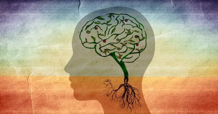 Ashwagandha-Natural-Cure-For-Alzheimer's-and-Parkinson's-Disease
