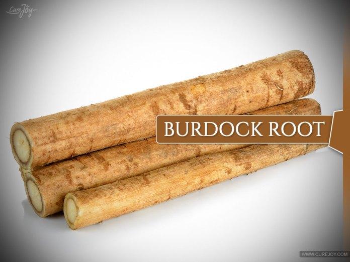 Burdock-Root: herbs to dissolve uric acid
