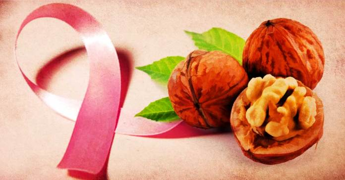 Walnuts Reduce The Risk Of Cancer