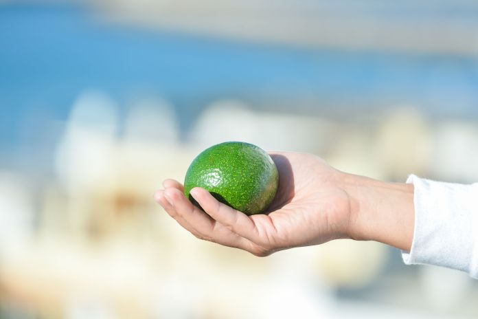 If the fruit yields, it is ripe - Pick it up
