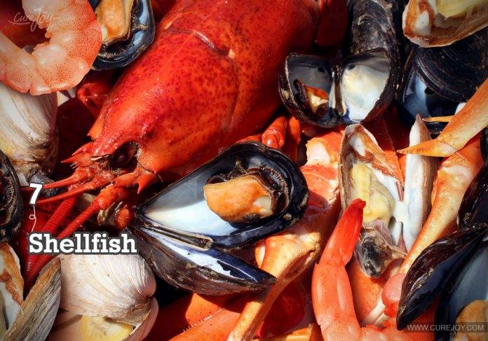 7-shellfish