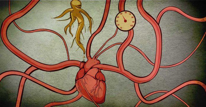 Ashwagandha for heart health