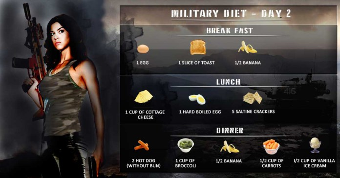 day 2 of 3 day military diet plan